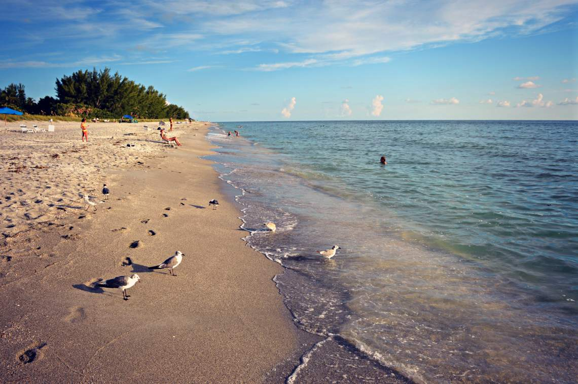 Expansive Beaches of Captiva Island