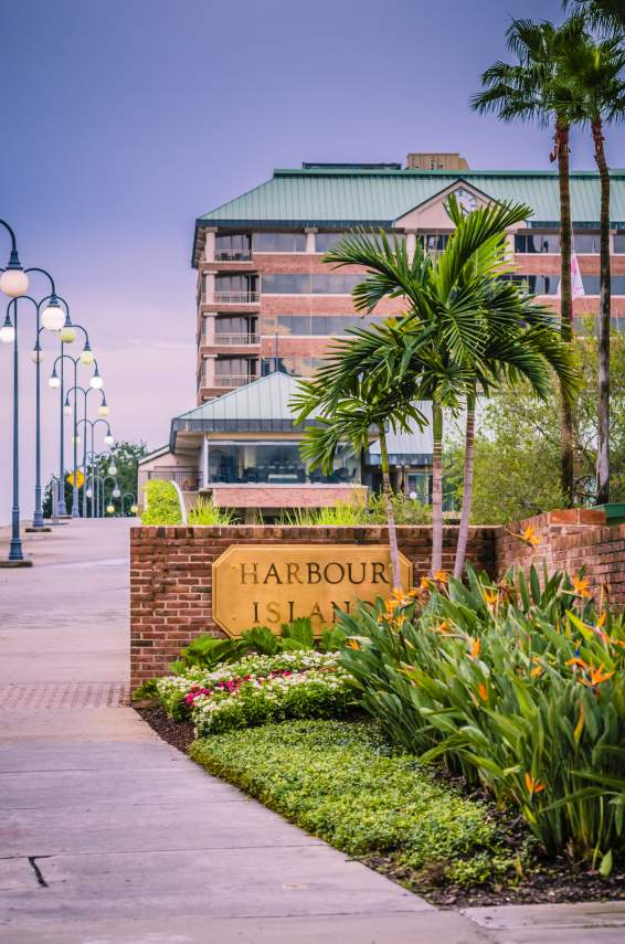 Welcome to Harbour Island